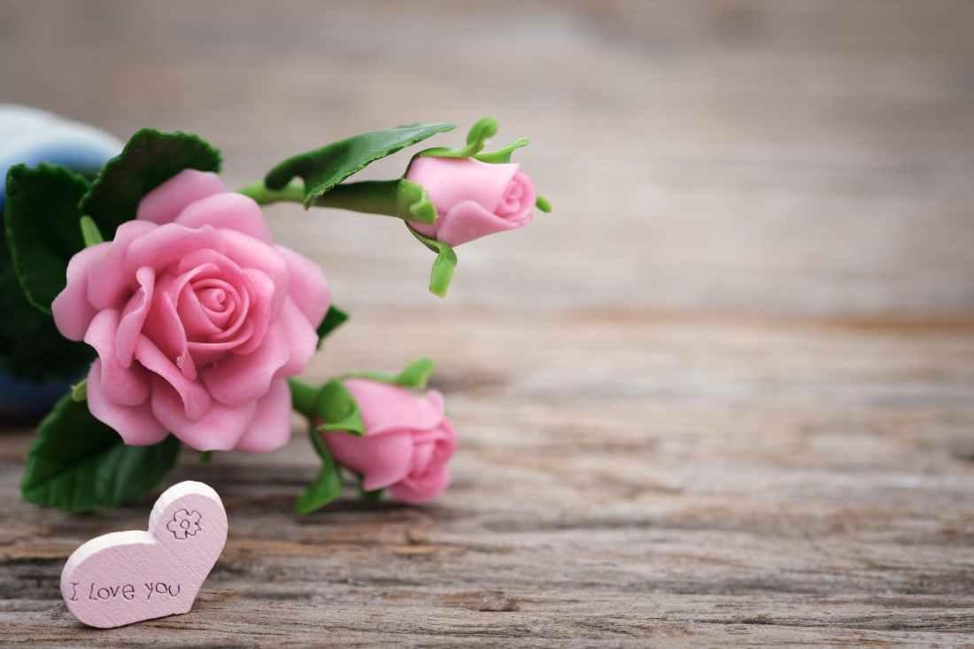 shallow focus photo of pink ceramic roses